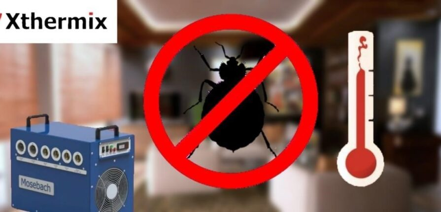 Bed bug extermination in Montreal